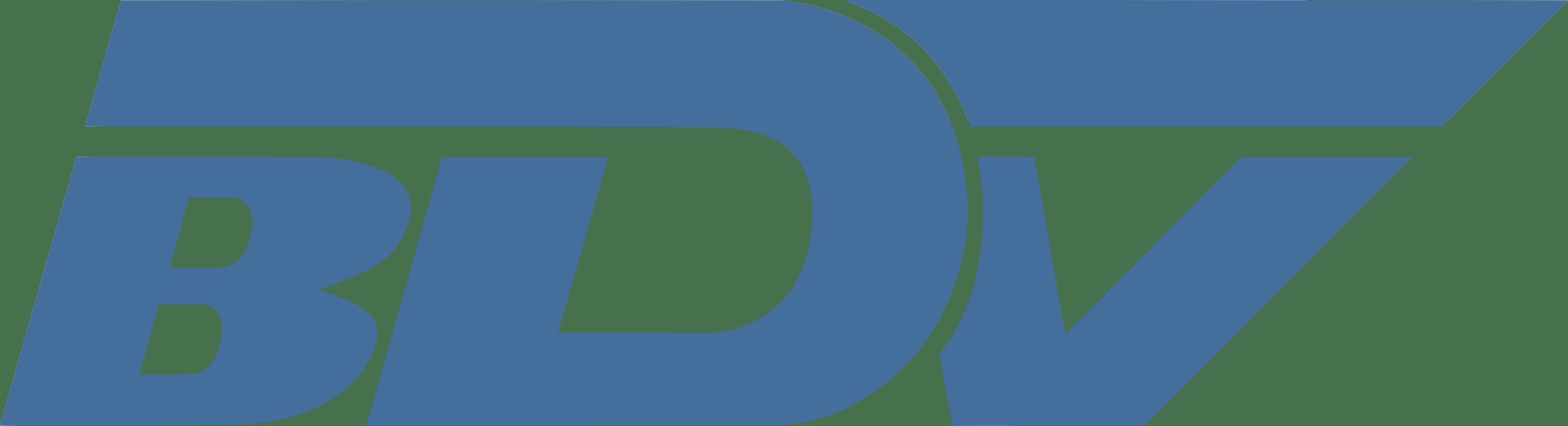 Logo BDV Branchen-Daten-Verarbeitung GmbH